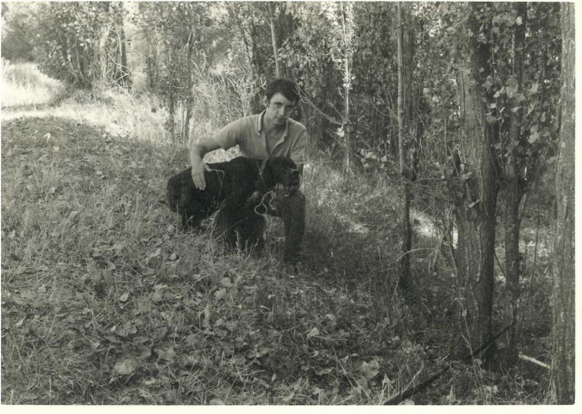 Sol, pointer de dos narices, uno de mis primeros canes