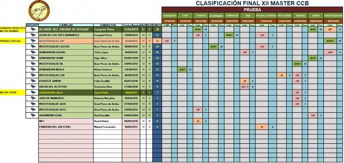 CLASIFICACION FINAL XII MASTER CCB